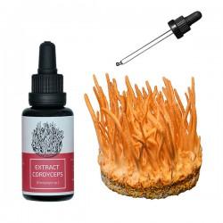 Cordyceps extract tinctura - 30ml